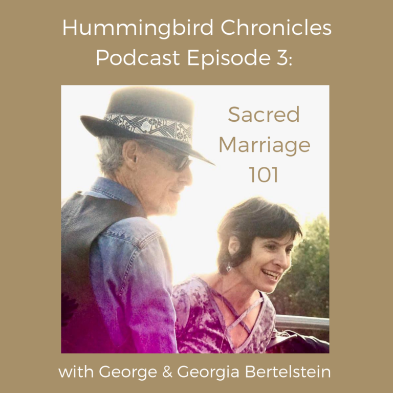 Hummingbird Chronicles Podcast Episode 3: Marriage 101
