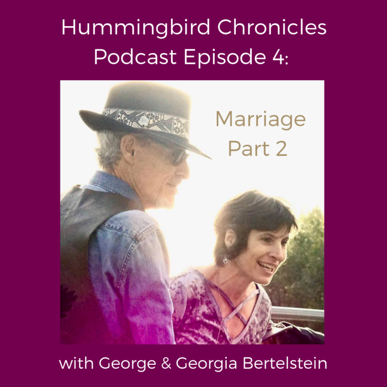Hummingbird Chronicles Podcast Episode 4: Marriage Part 2
